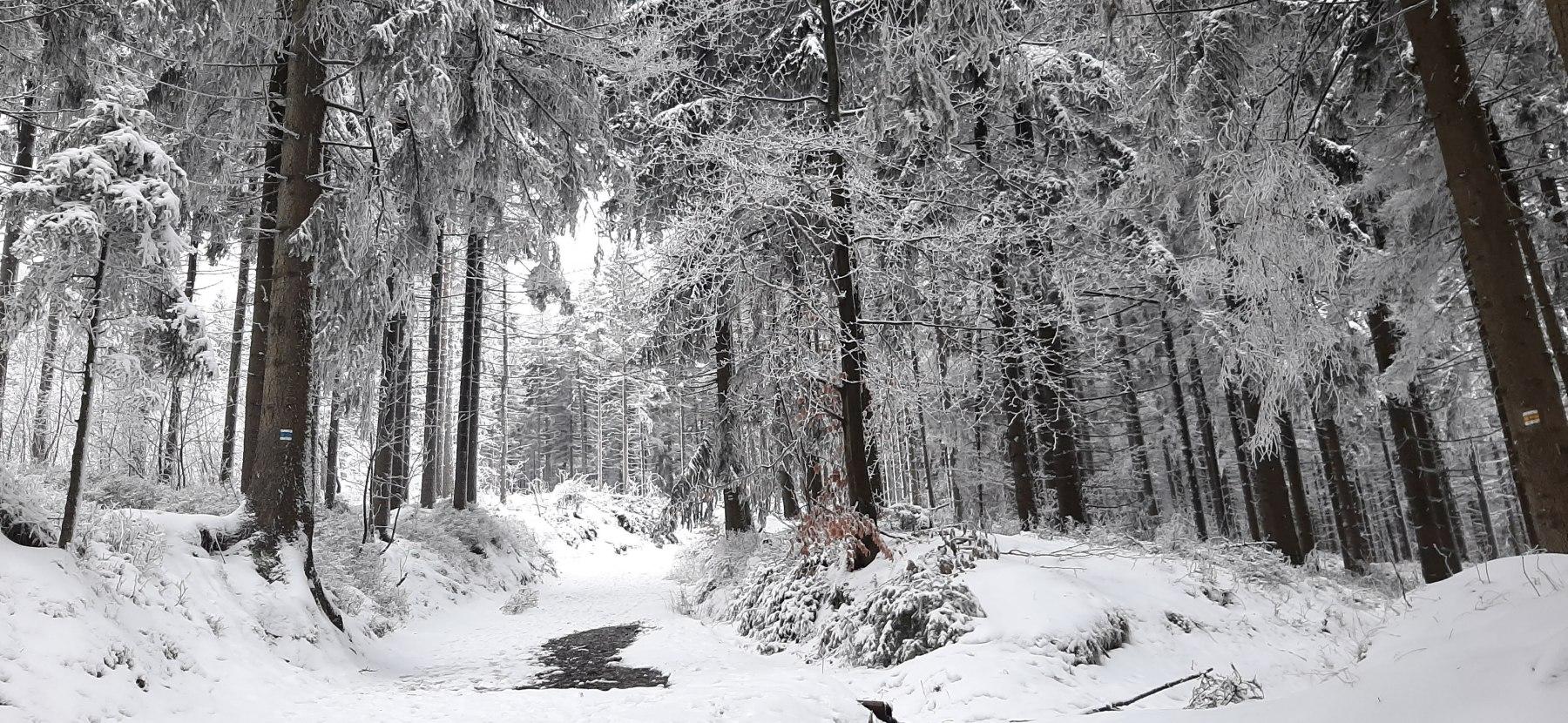 Zima na Ještědu