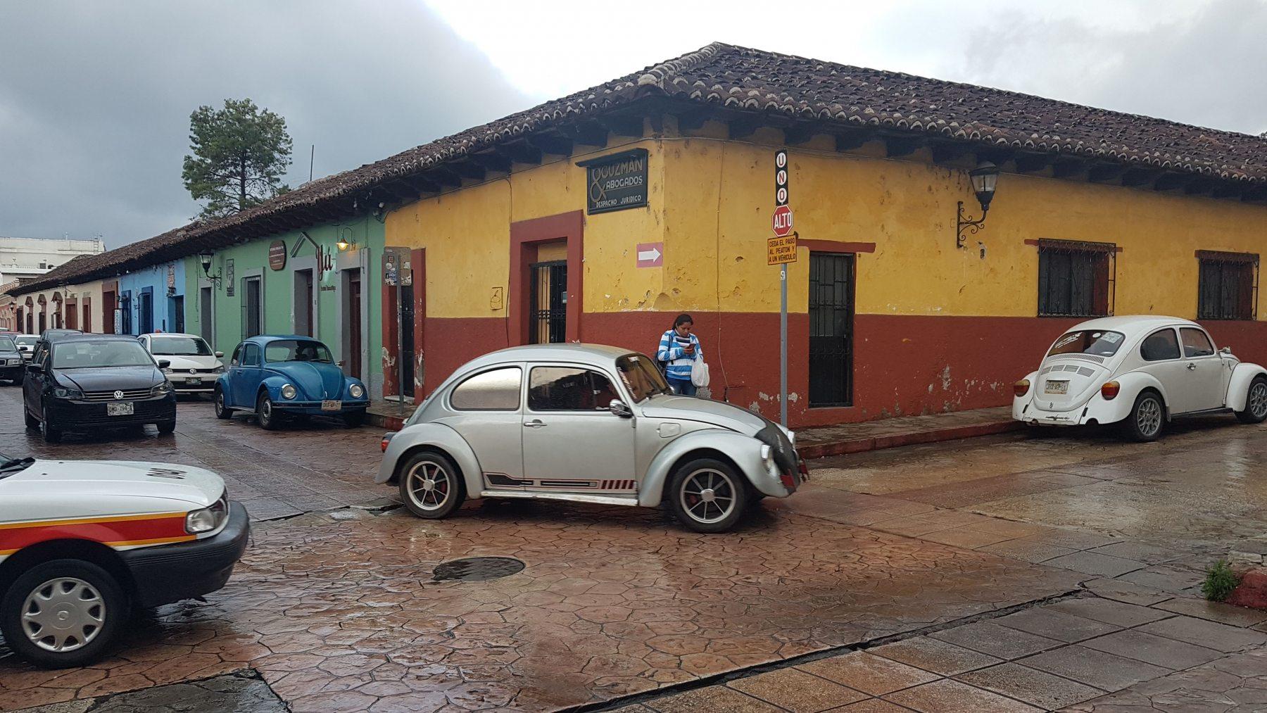 Brouci v San Cristobal de las Casas
