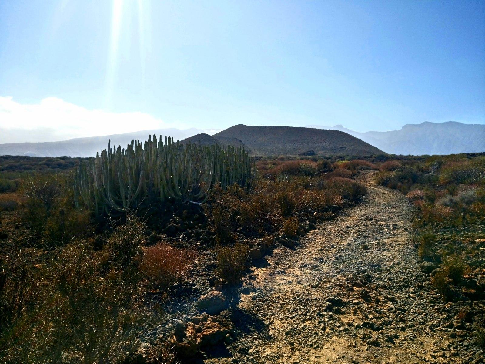 Sopečná krajina Tenerife
