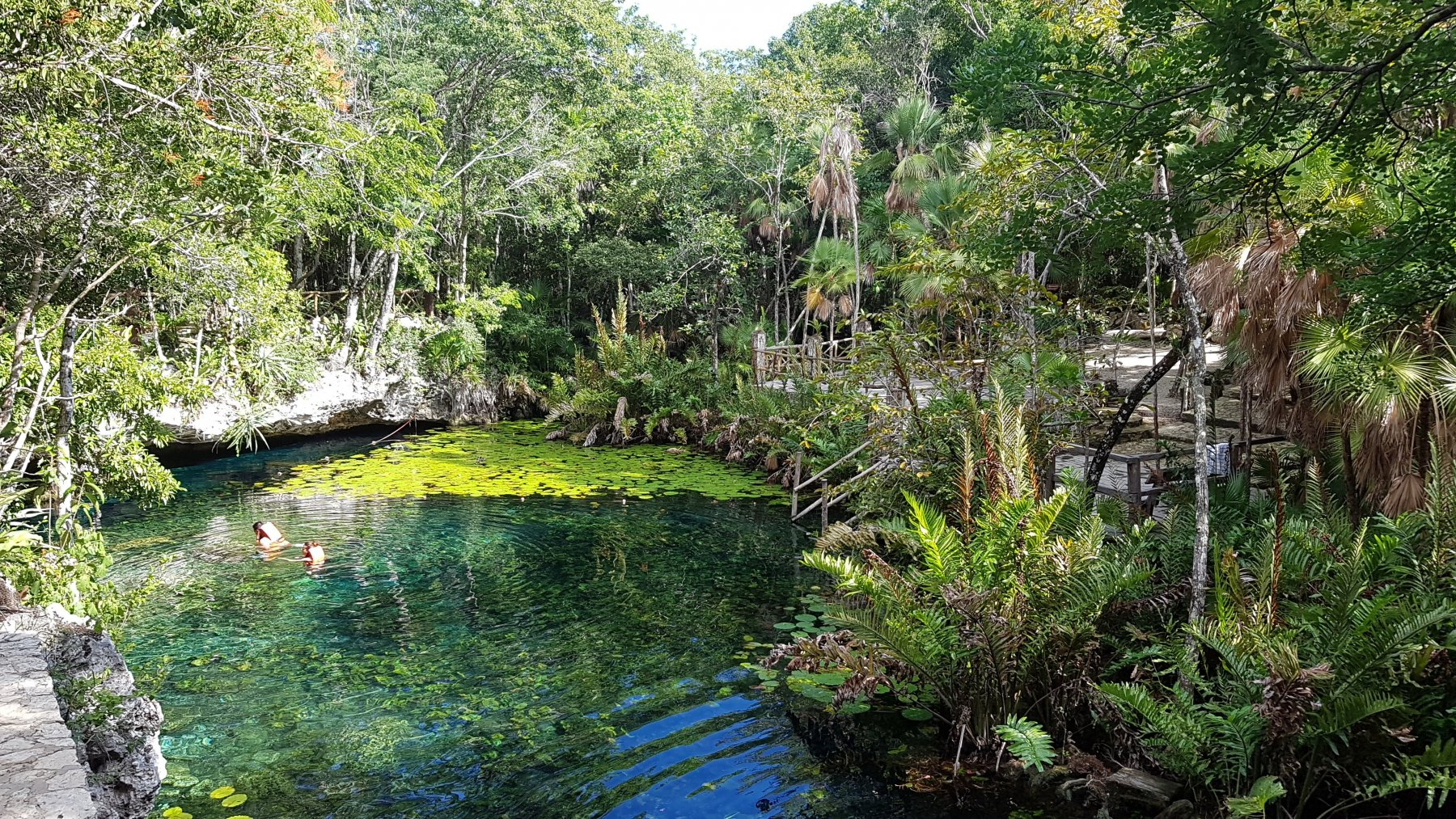 Cenote Nicte-Ha