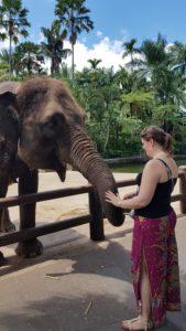 Šárka a slon