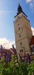 Městská věž v Trnavě